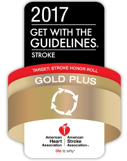 2017 AHA Gold Plus Quality Achievement  (logo image)
